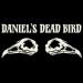 Daniel's Dead Bird